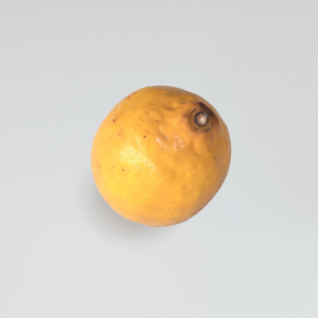 Zitrone Gelb 3D Rendering Eder Stefan Oberösterreich